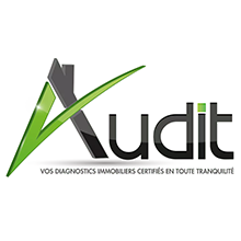 AUDIT DIAG